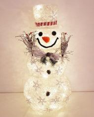 87853-led-snjegovic2